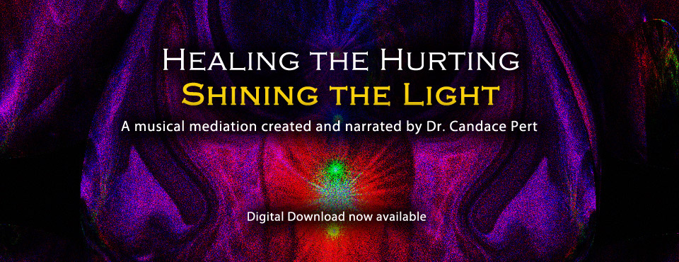 Healing the Hurting, Shining the Light digital download